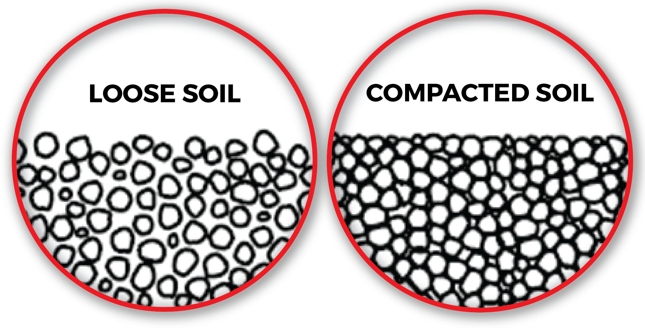 soilpic-01.png